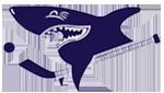 Серебряные Акулы`00